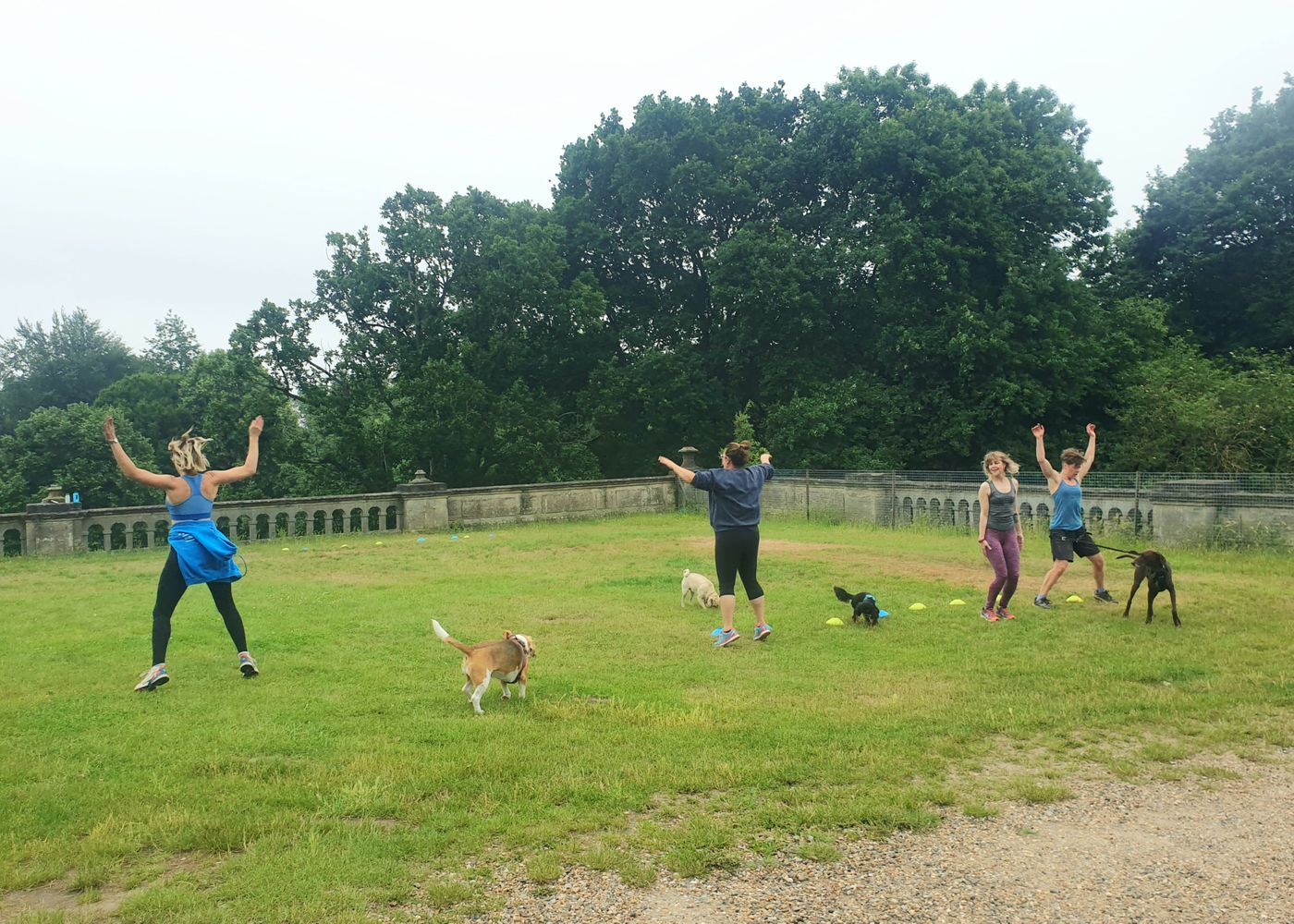 I think it's fair to say the [Woof Camp](classes/4eXY9sAhENjH) trial was a hit with dogs and humans alike!! Thank you everyone who joined in the fun! See you for round 2 on Sunday morning 🐶🤸♀️
