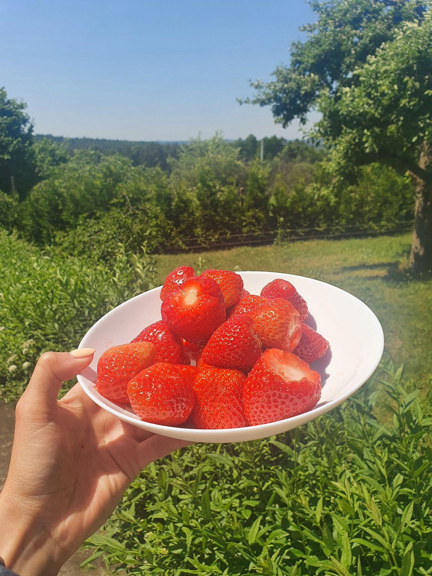 Happy Sunday! What's your favourite fruit? I love all berries - low in sugar, high in antioxidants and fiber 😋 yummm