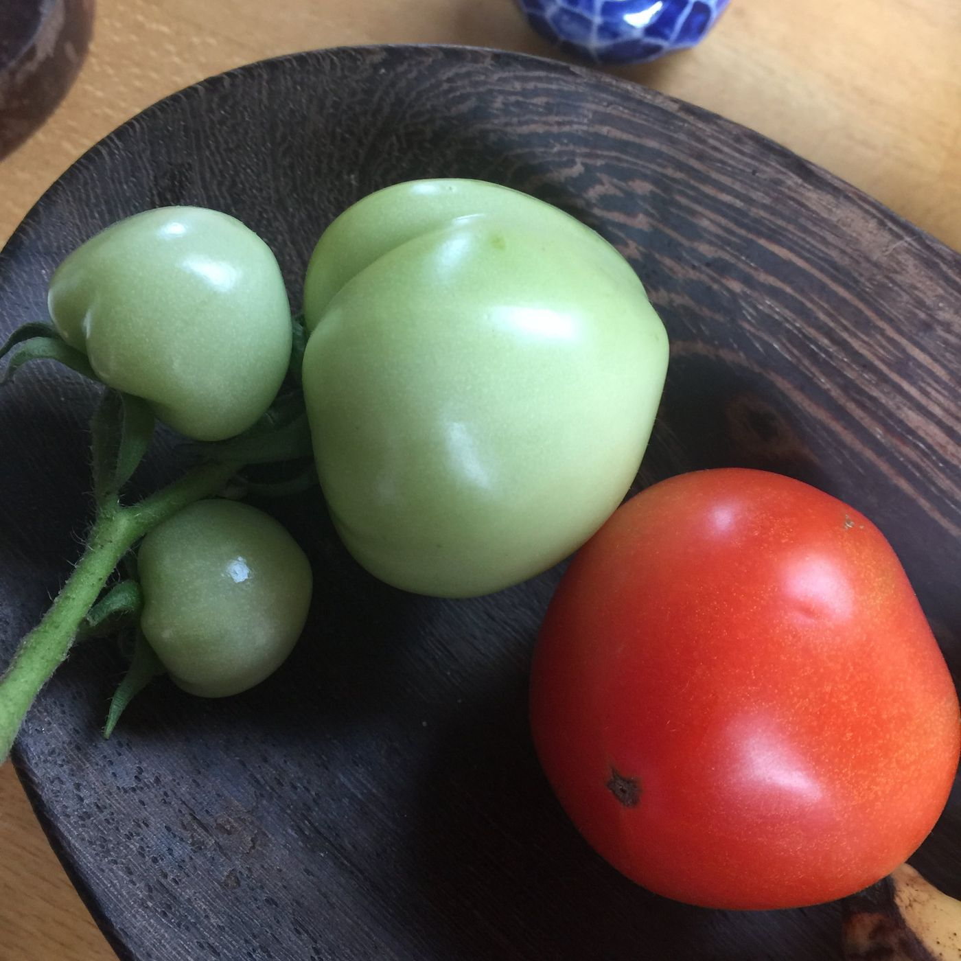 Did you take up any new hobbies this year? I grew my first tomatoes 🍅. Still a bit of time to take something up before the year ends. What do you want to do?