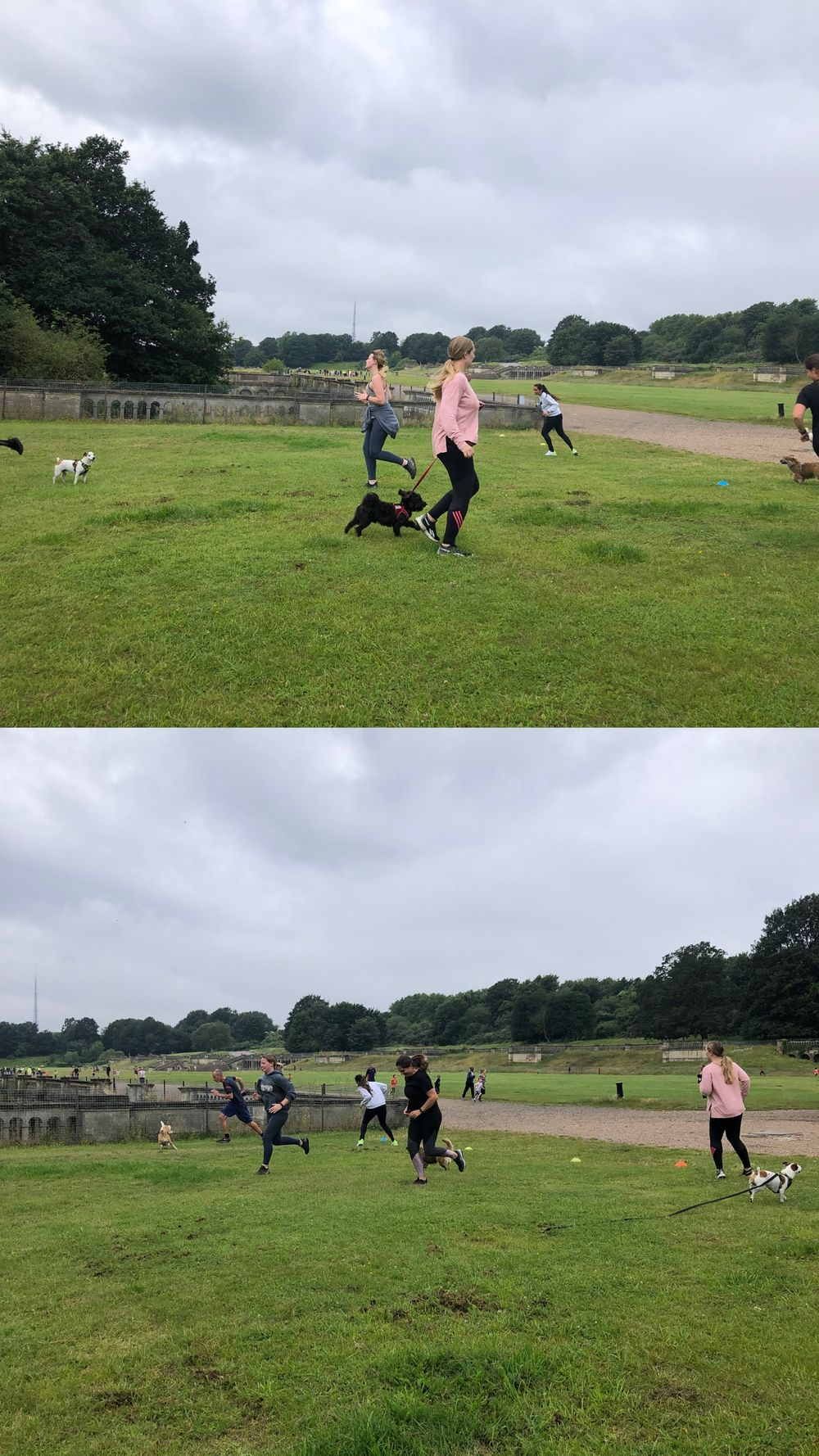 We had so much fun at Woof Camp today in Crystal Palace 🐶🐕 beautiful chaos! Hopefully I did a good job covering for [@SarahsAlternativeFitness](/u/SarahsAlternativeFitness) 😊