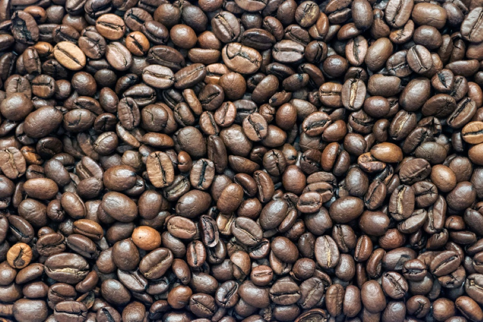 Can You Drink Too Much Coffee?